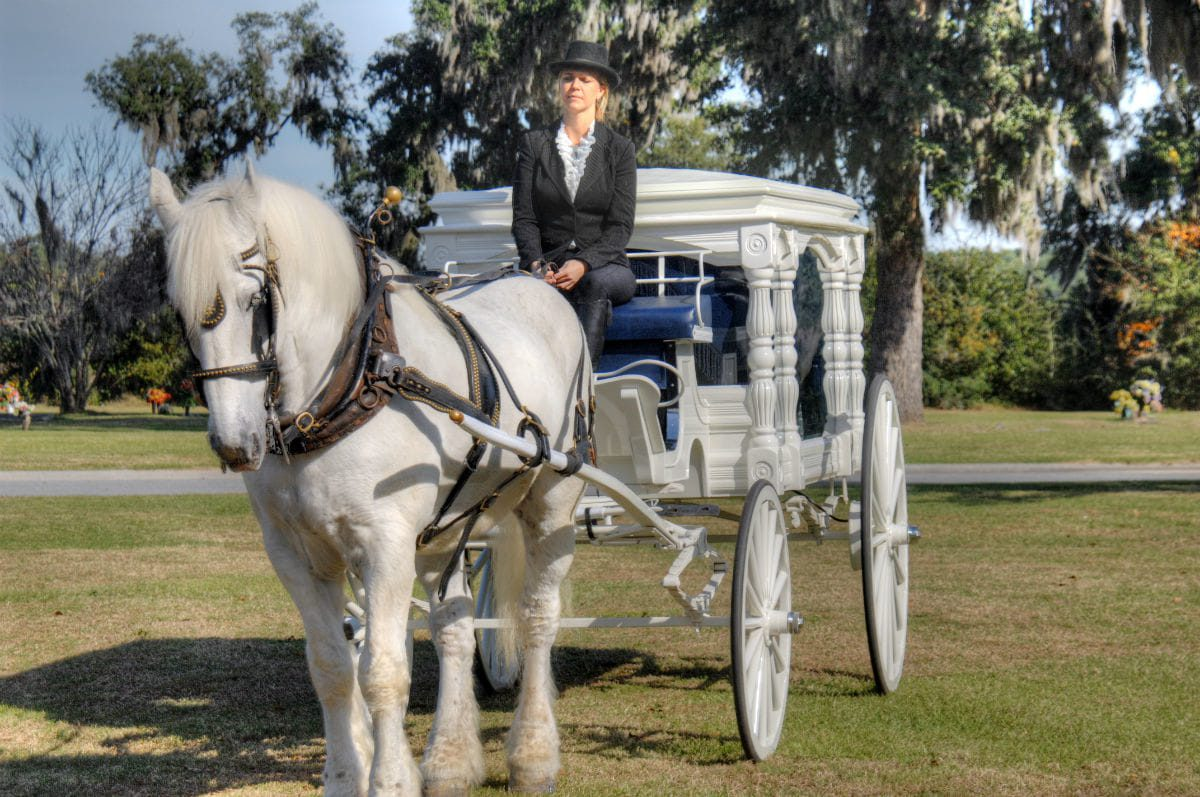horse drawn carriage service
