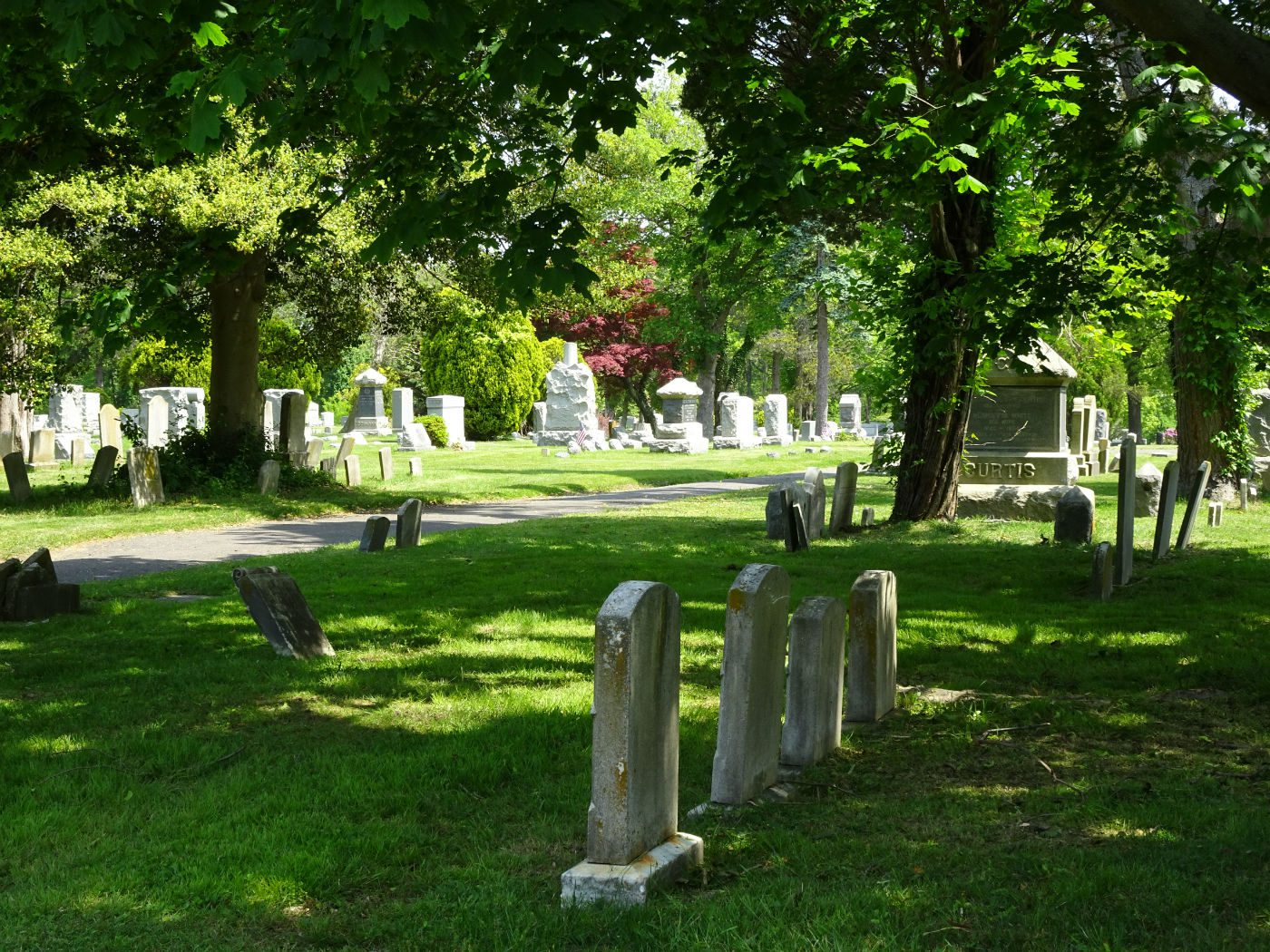 cemetery surrounded by grass and trees