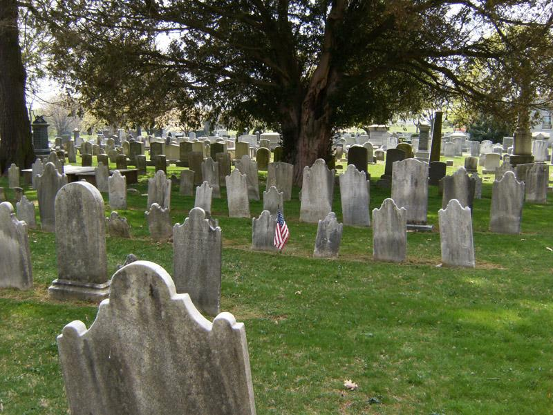 cemetery with American flag next to headstone