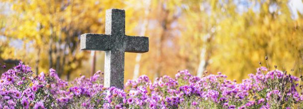stone cross head stone surrounded by purple flowers